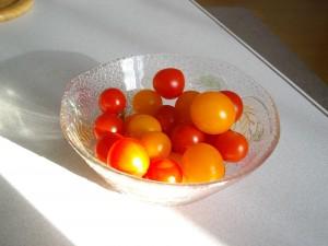 puchi tomato